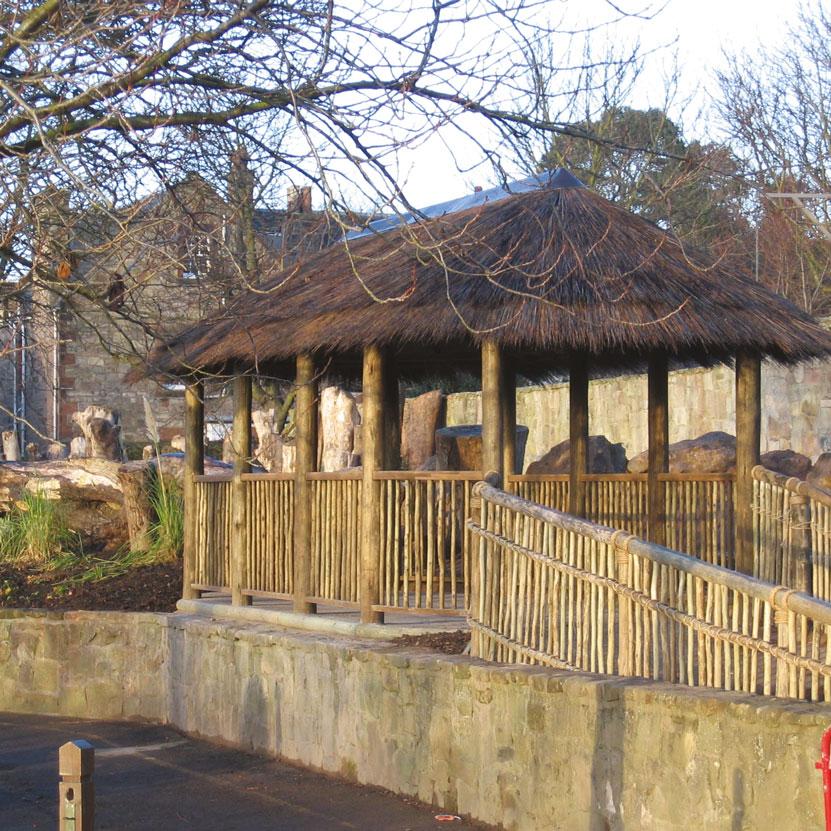 Edinburgh-zoo-1