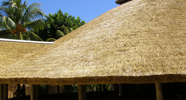 africa roofing thatch