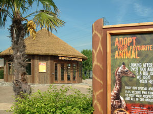 Zoo Theming – Environmentally Friendly Thatch Materials