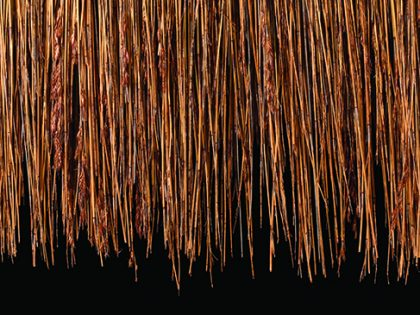 Fire Retardant Thatch Materials