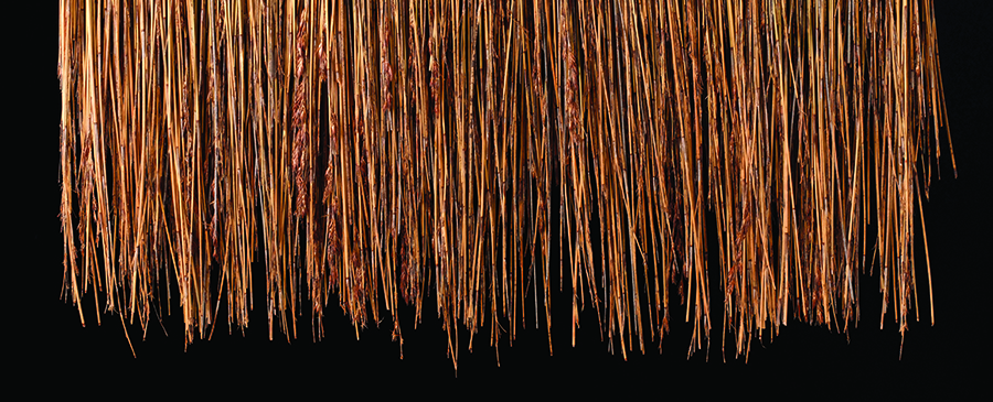 900 x 365 Tropical Thatch - Africa Roofing Fire Retardant Thatch