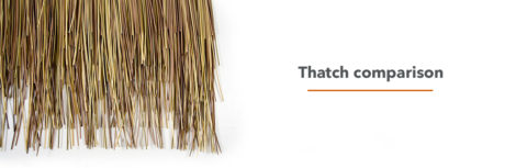 thatch comparison