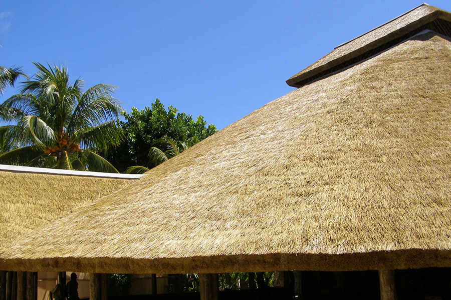 Cape Reed Thatch Roofing
