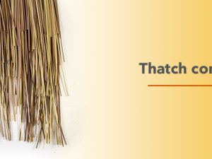 Natural, Synthetic or Artificial Thatch