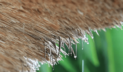 How Waterproof is Thatch Material?