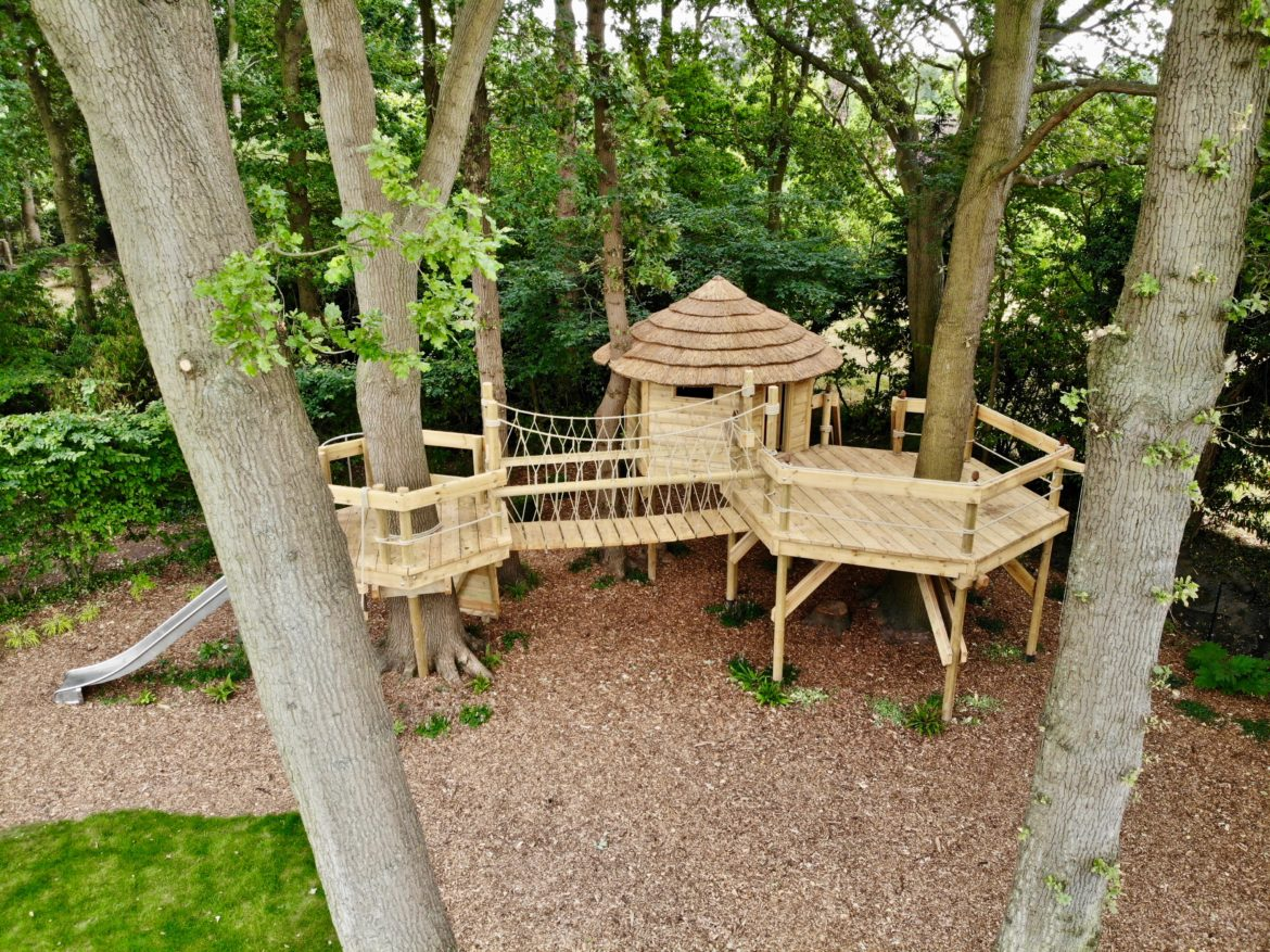 Aerial view of treehouse project