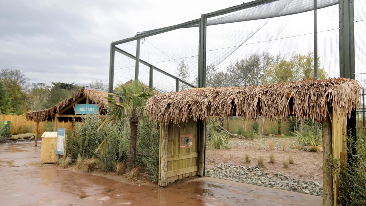 Africa Roofing UK thatching at the Madagascar Exhibit, Chester Zoo
