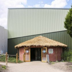 The rondavel style exit to the Chimpanzee Eden at Twycross Zoo. Artificial Fibre Palm thatching supplied by Africa Roofing UK