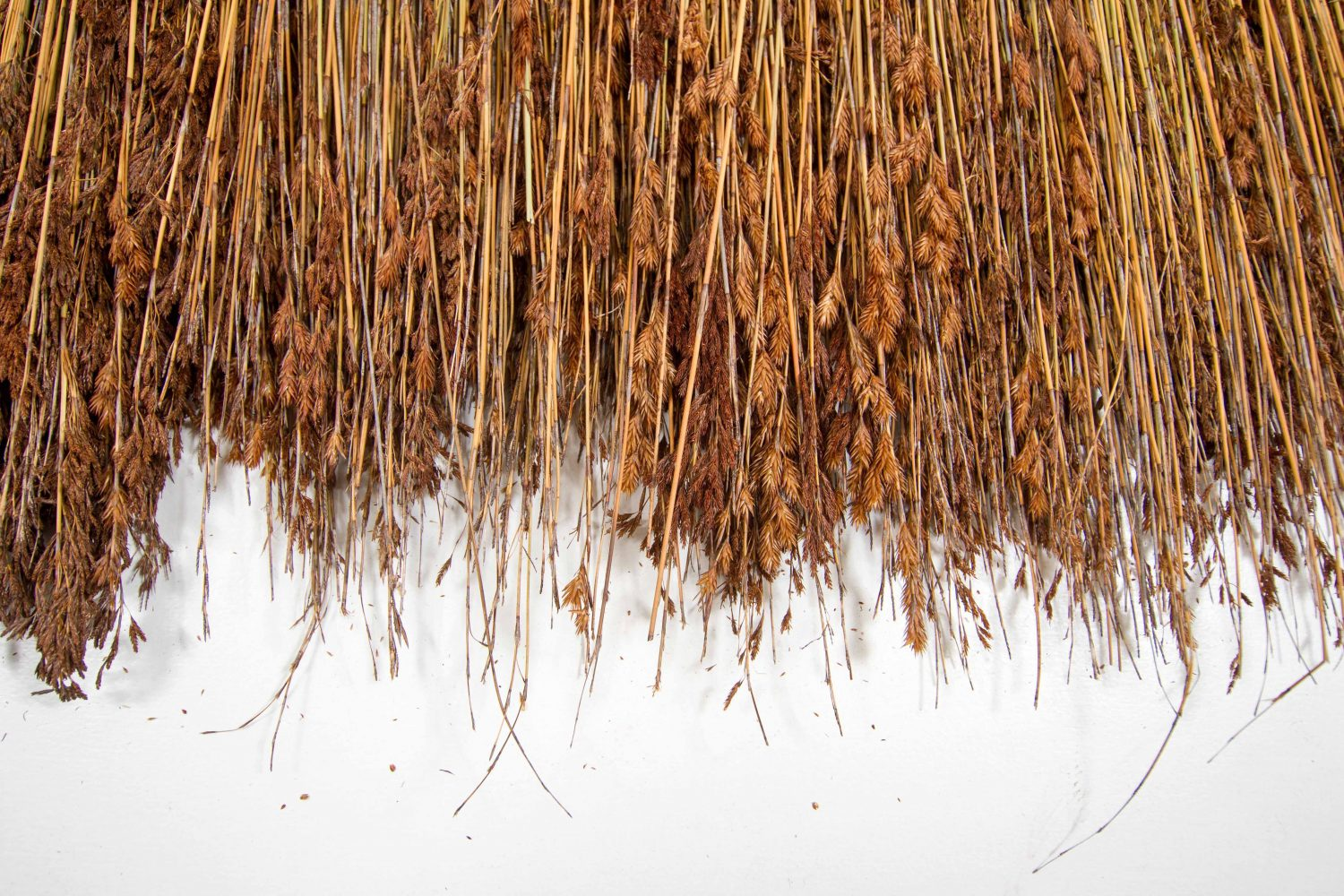 Tropical Thatch by Africa Roofing