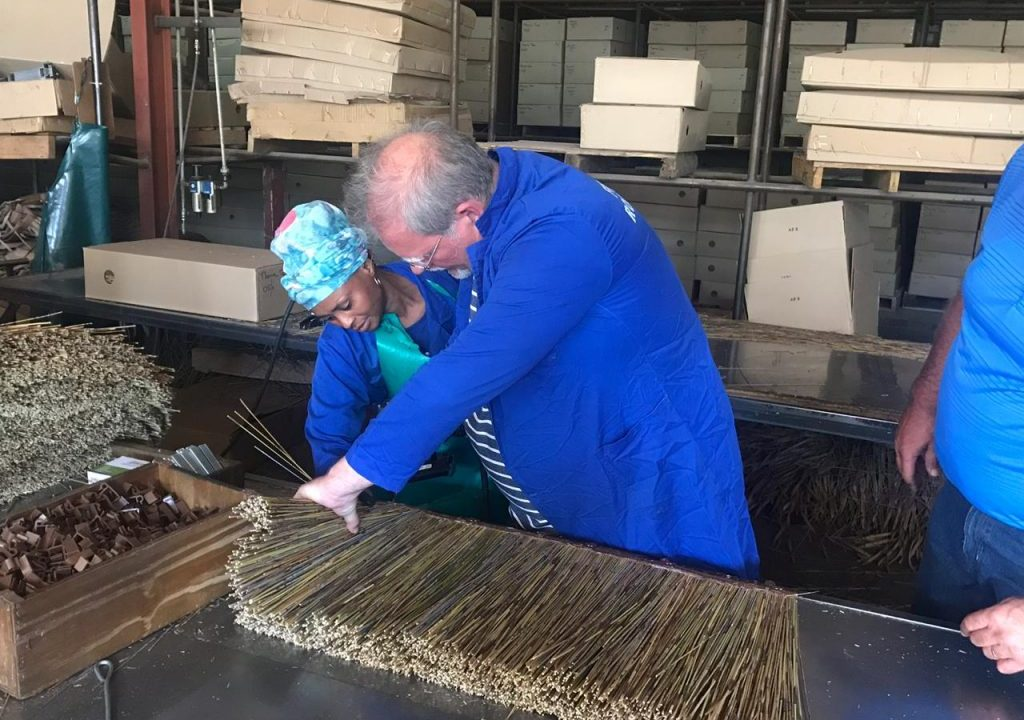 Our Commercial Manager David Davies has a go at hand making some of our thatch tiles