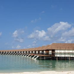 Aarah Veli, Maldives water villas. Thatching provided by Africa Roofing